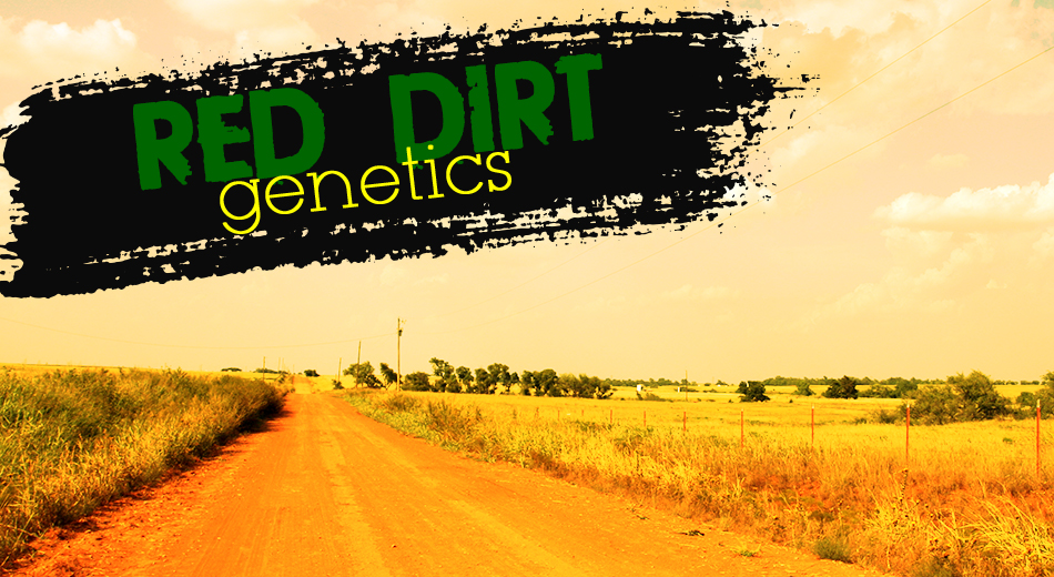 Red Dirt Genetics